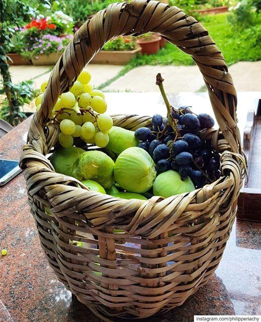 من ميزات الفواكه انها تملك منظرا جميلا يسر العين بلإضافة الى طعمها الرائع ، (Zahlé, Lebanon)
