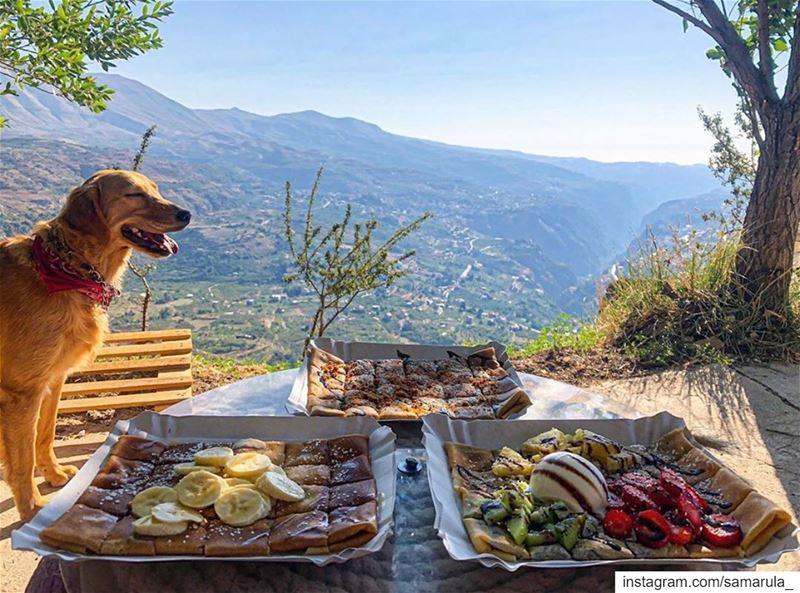 Good vibes only 😌📸 @mon_eclat ... samarula morning yummiest ... (The Cedars of Lebanon)