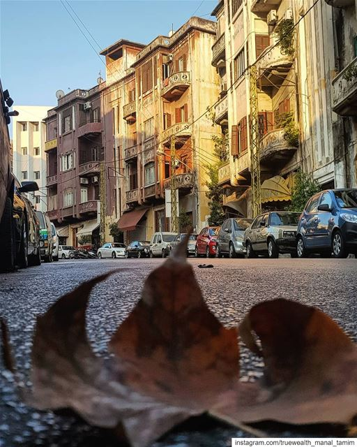 I feel pretty much better when I melt with my ground..🍃📍○.......... (Beirut, Lebanon)