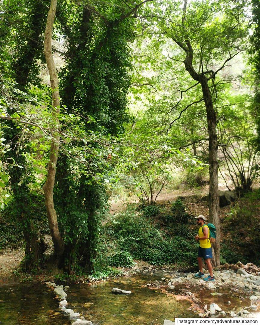 Wilderness 🏞 myadventureslebanon mountaineering choosemountains ... (Cyprus)