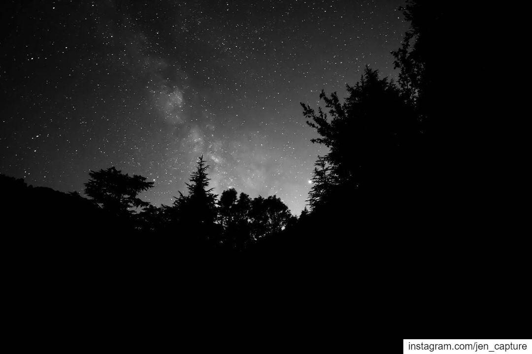 Milky-way n Jupiter in monochrome🤩•••• Ehden Lebanon Lebanese ... (Horsh Ehden Nature Reserve)
