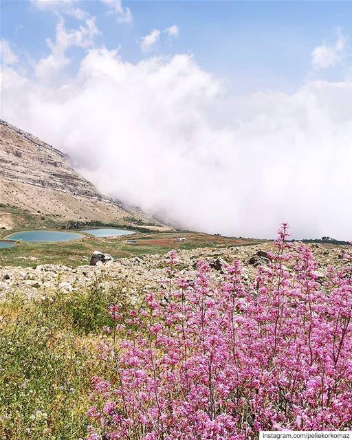 بحيرات العاقورة (Akoura, Mont-Liban, Lebanon)