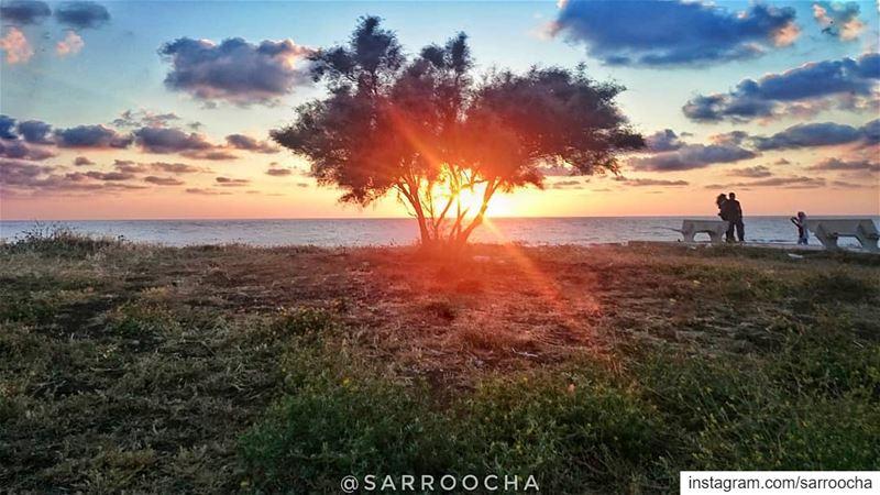 Here comes the sun ☀ takenbyme ptk_Lebanon visitlebanon ... (مدينة صور - Tyre City)