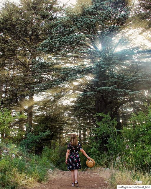 I think there is a lot of happiness out there in the world. I think one... (Cedar Reserve Tannourine)