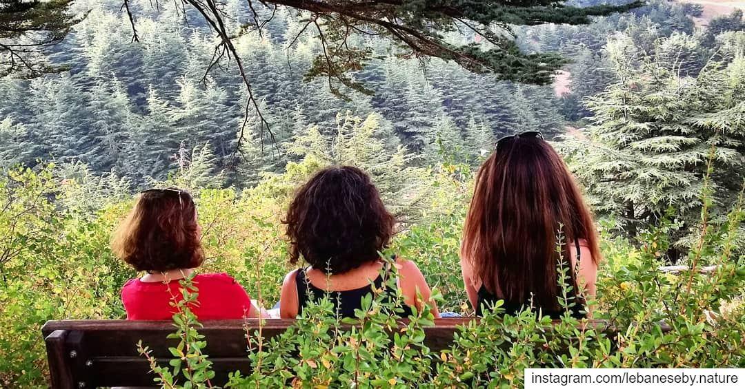 Nature Therapy.. barouk baroukcedars forest cedars girls ... (Arz el Bâroûk)