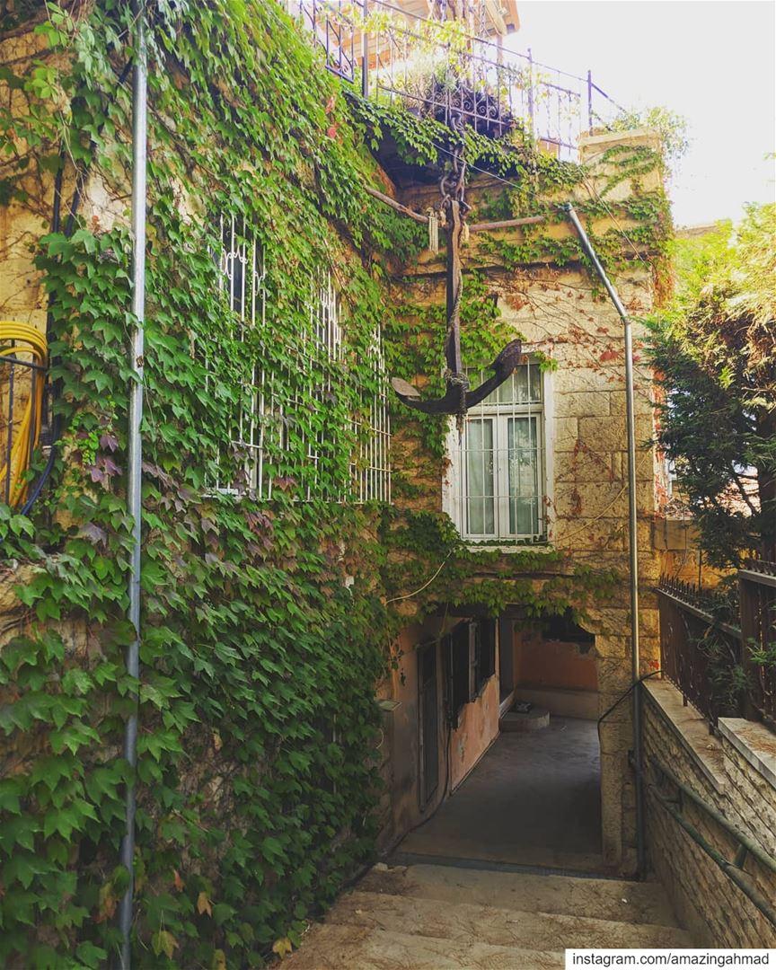 Tbh Douma, you're pretty pretty.🤩 (Douma, Liban-Nord, Lebanon)