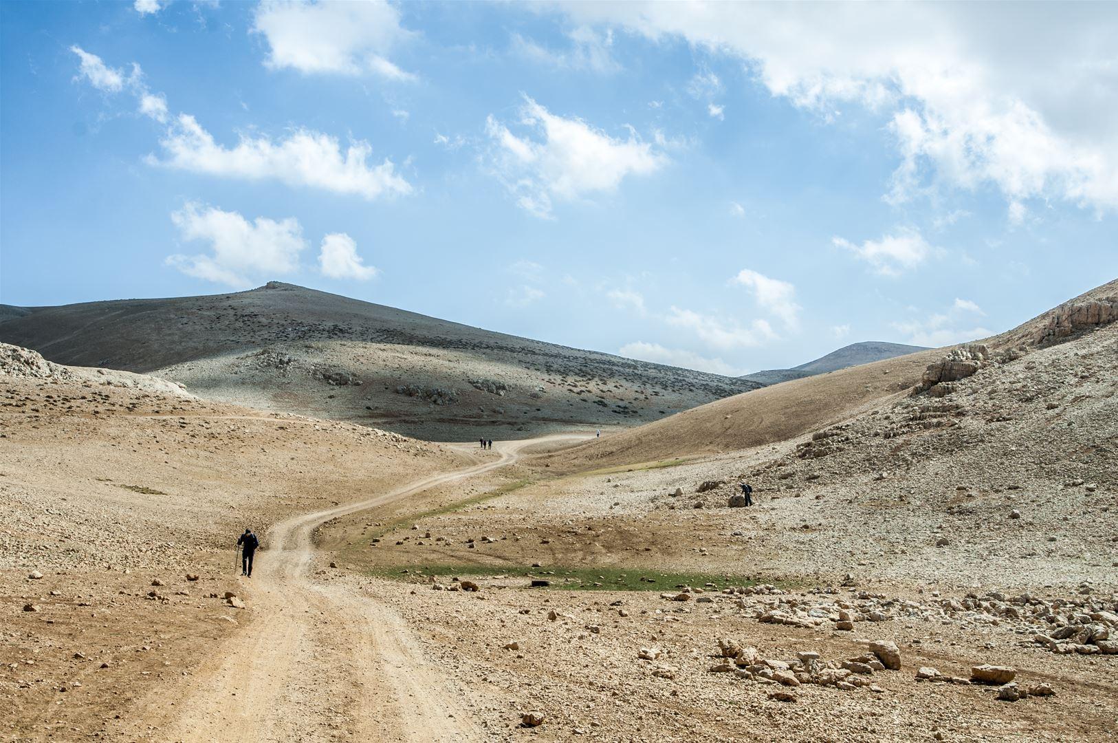 The Highest Lebanese Grounds (Black Peak Road)