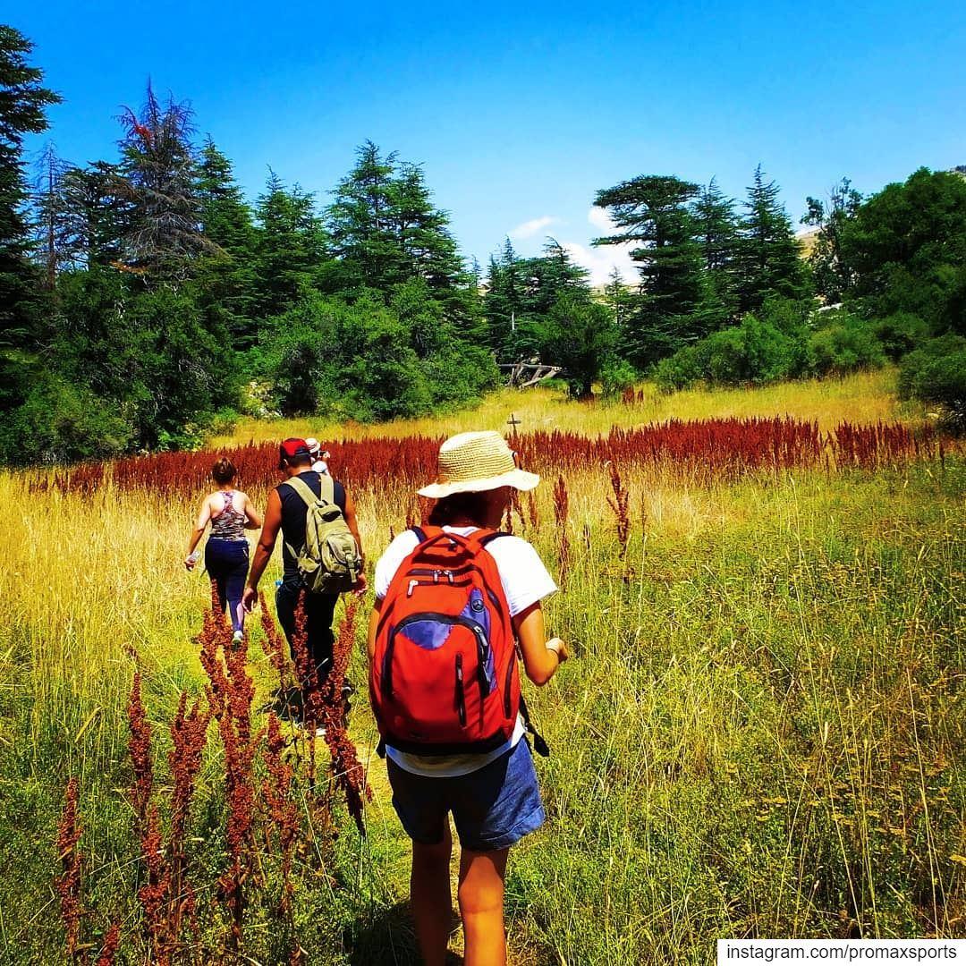 Hiking Ehden Forest Reserve.Sunday, October 6.Reservation 03955642... (Ehden, Lebanon)