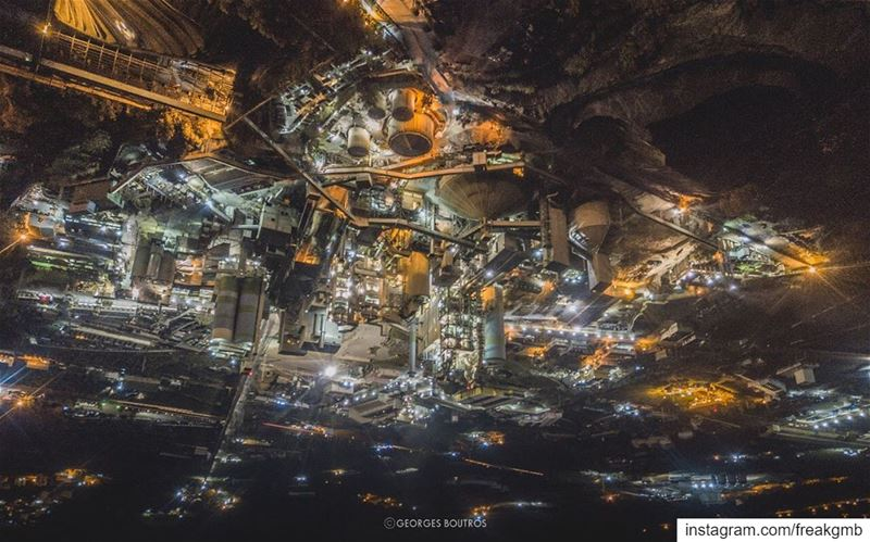 The Hanging gardens of chekka😏 - turn phone upside down for a different... (Chekka)