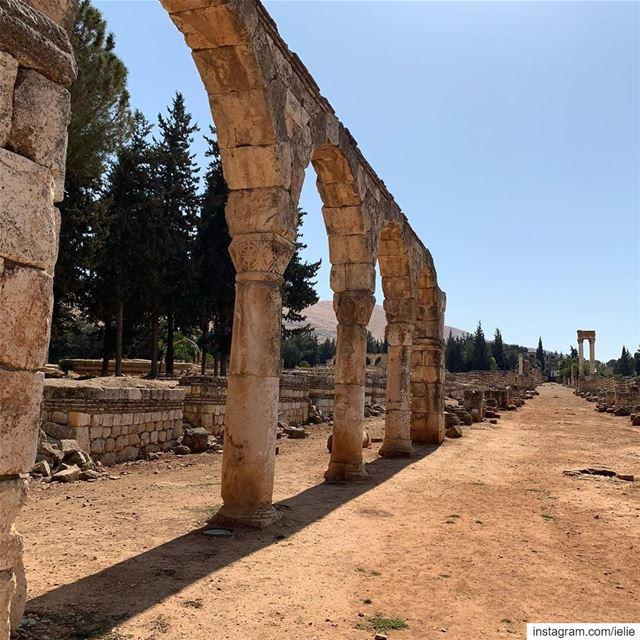 Anjar citadel bekaa livelovelebanon livelovebekaaa wearelebanon ... (`Anjar, Béqaa, Lebanon)