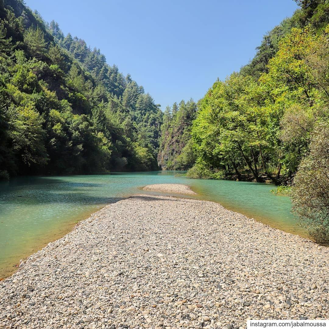Posted @withrepost • @areej.khaddaj The road to..? 🏞🏝 JabalMoussa ... (Jabal Moussa Biosphere Reserve)