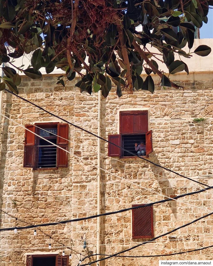 Watching the world from above 🧸!.. saida sidon lebanon streets ... (Saïda, Al Janub, Lebanon)