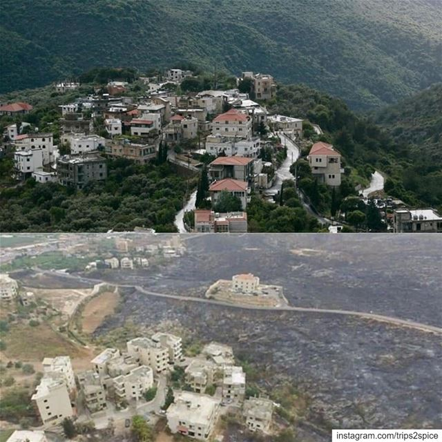 The damage is unbeliavable! Mechref area before and after the wildfires.... (Lebanon)