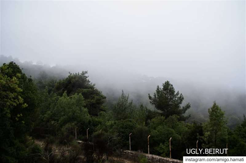 Lost in the Fog Alay Lebanon🇱🇧.... beirut uglybeirut nature ... (`Alayh, Mont-Liban, Lebanon)