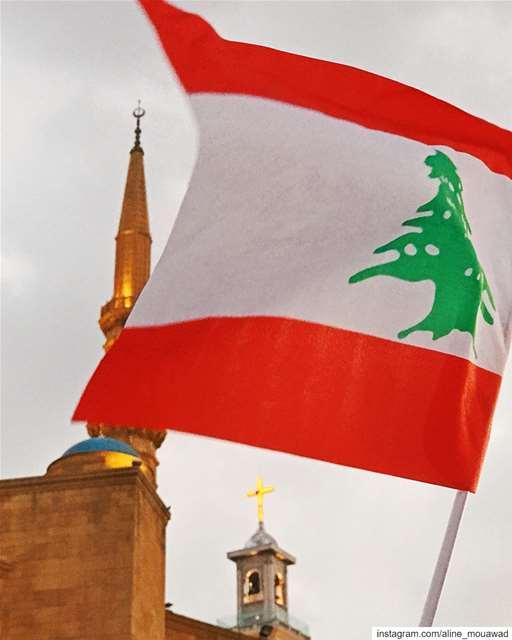 My Lebanon 🇱🇧
