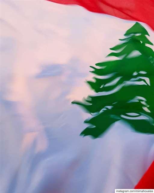 🇱🇧🇱🇧🇱🇧💪 lebanon lebanonrevolution revolution history allforone... (Beirut, Lebanon)