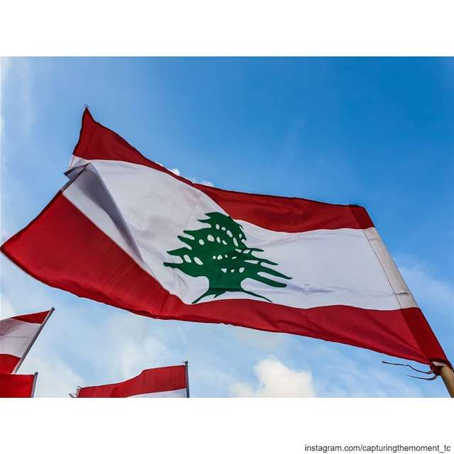lebanon love red white green lebaneseflag revolution 2019... (Lebanon)