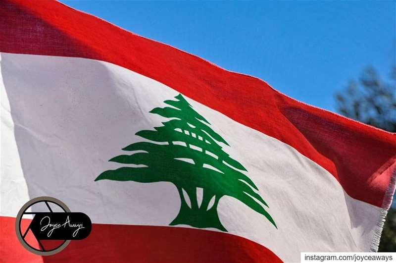 I believe we can FLY🇱🇧🇱🇧🇱🇧🇱🇧🇱🇧🇱🇧 lebanon 🇱🇧 لبنان_ينتفض ...