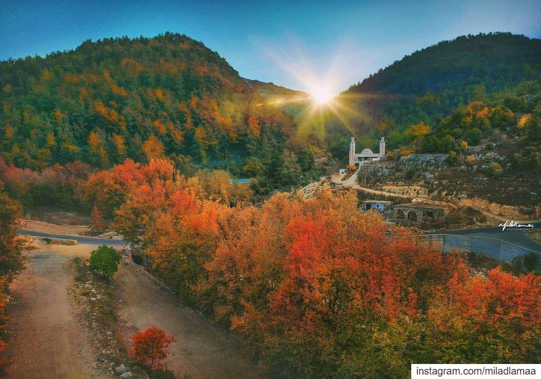 """""""شوف"""" الألوان..(نهر الحمام - الشوف) ..Autumn has come.. 🍂🍁 autumn🍂 ... (نهر الحمام)"""