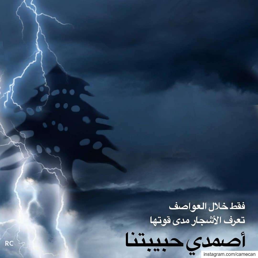 🇱🇧 lebanon lebanese ilovelebanon iamlebanese livelovelebanon ...