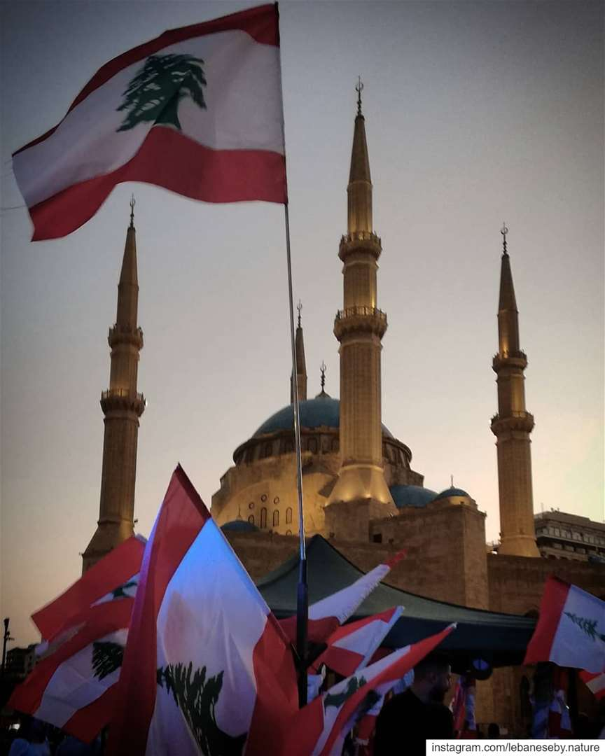 OctoberRevolution Time for old leaves to fall and new ones to ... (Al Amin Mosque Beirut)