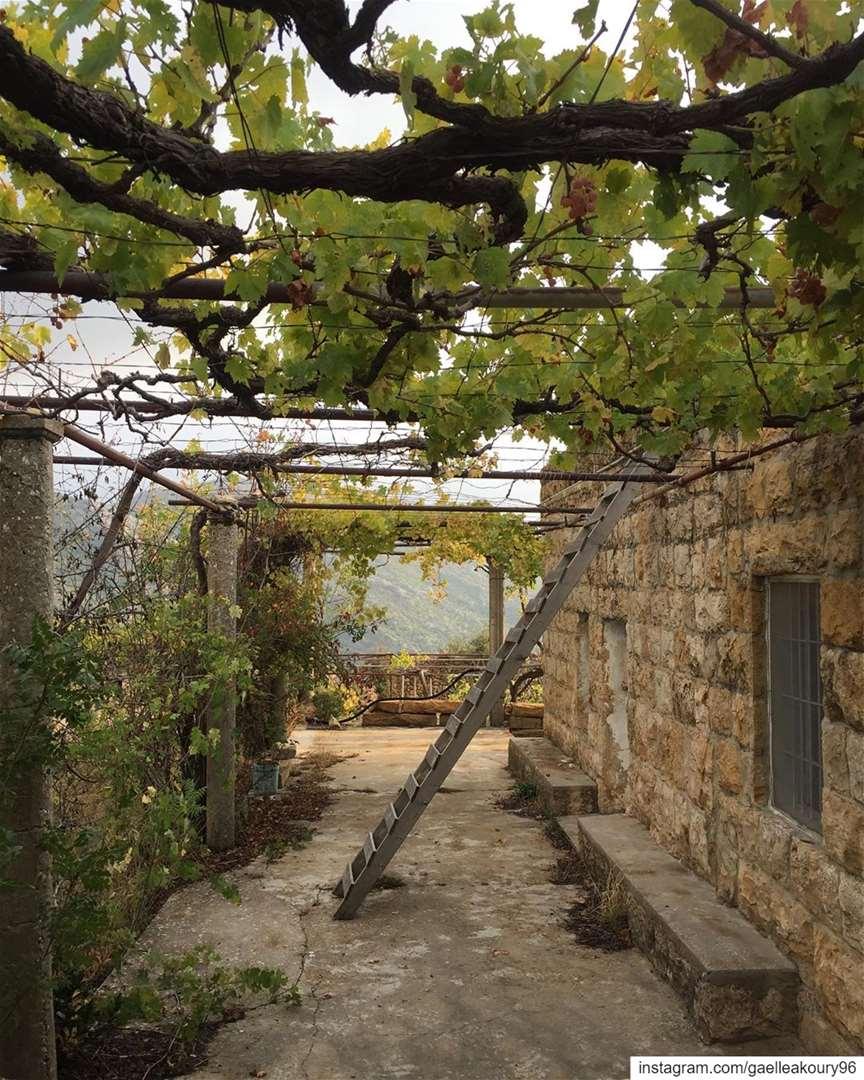 Simplicity is Beauty ❤️ lebanonhouses lebanon mountain life spirit ... (Ehmej, Mont-Liban, Lebanon)