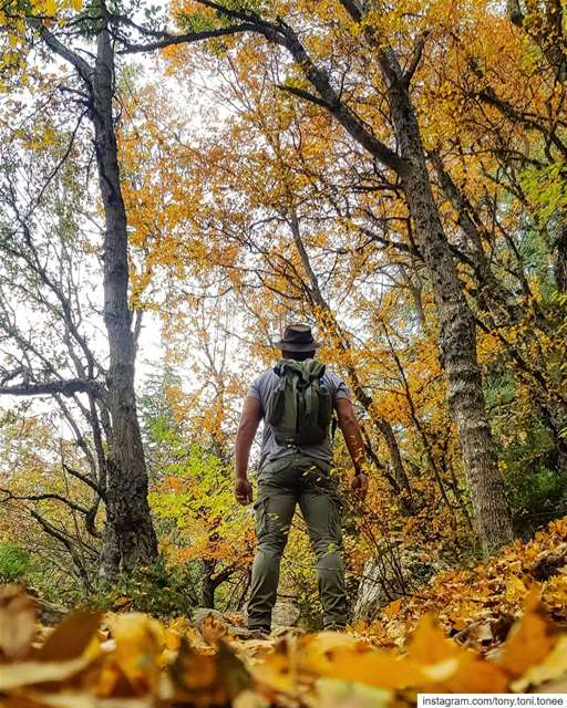 Chasing Nature's Colors !!!... super_lebanon ig_lebanon ... (Ehden Natural Reserve)