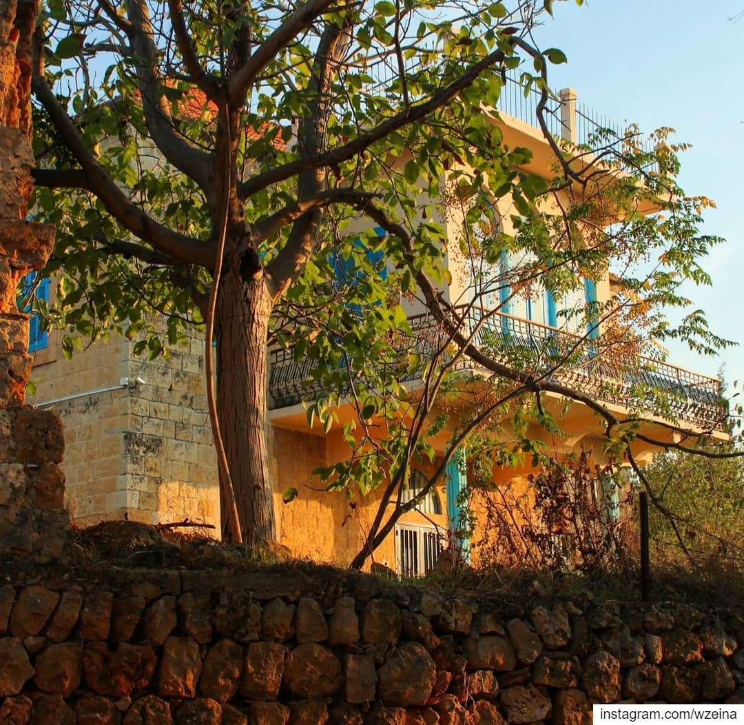 🍂🍃.. lebanon beino akkar liveloveakkar fall autumn ... (Beïno, Liban-Nord, Lebanon)