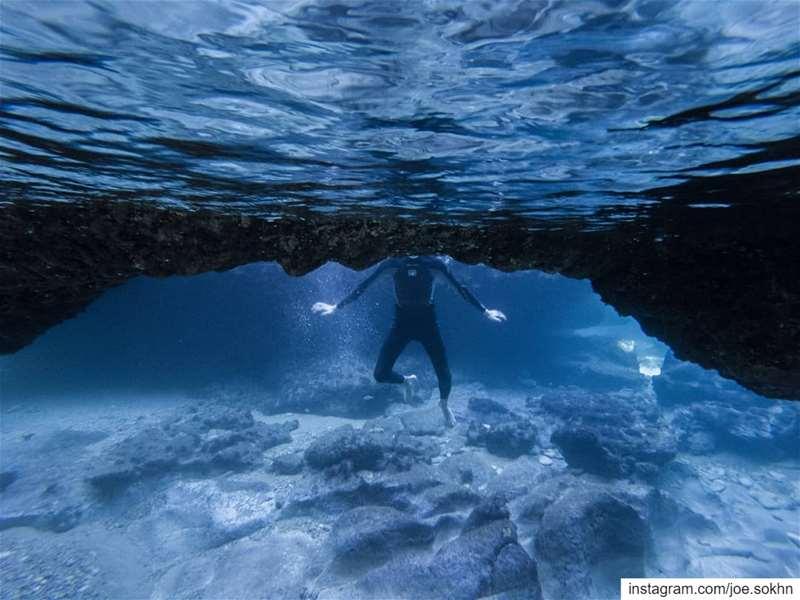 Blue Christmas 🇱🇧💙🇱🇧 count the fish & swipe👈...||My Yearly detox... (Kfar Abida)
