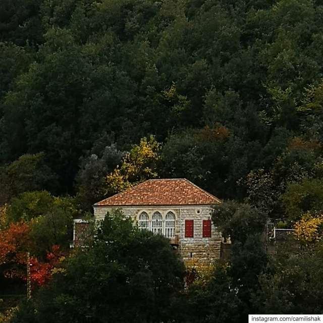 lebanon lebanonhouses autumn fall naturephotography nature mountlebanon... (Dlebta, Mont-Liban, Lebanon)