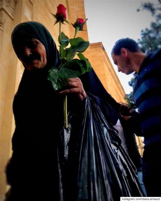بيروت - Beirut ♥️.. beirut flowers shotoniphone street ...