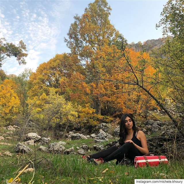 🍂 mothernature november picnic autumn hike hiking forest wildnature... (Ehmej, Mont-Liban, Lebanon)