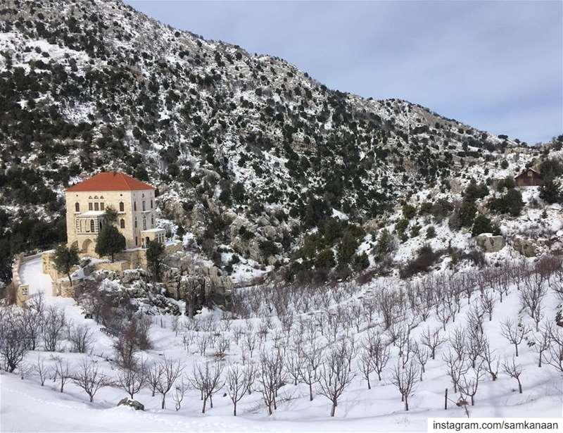 ..... flashbackfriday snow winter freezing itscoldoutside ...