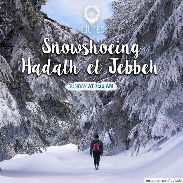 This Sunday we will get lost in the wonderful scenery of Hadath el Jebbeh!... (Hadath Al Jubbah, Liban-Nord, Lebanon)