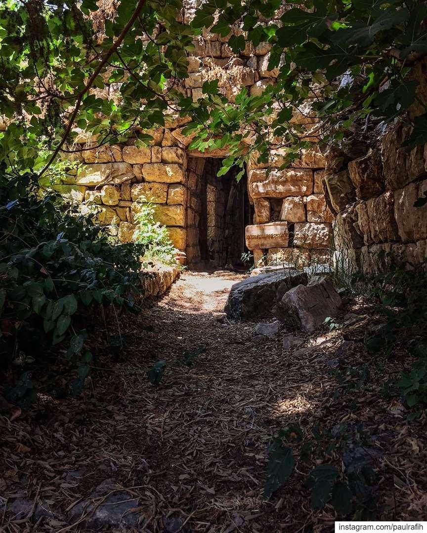 Scattered stones of stories untold... exploremore hidden gems ... (Lebanon)