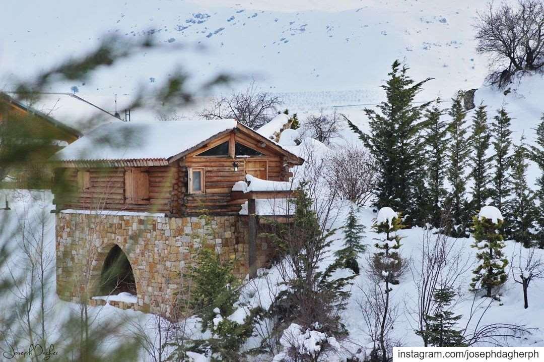 ❄️_______________________________________________________ JDPhotography ... (Ehden, Lebanon)