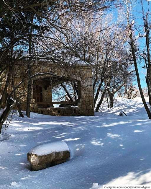 Beautiful snowy Lebanon 🇱🇧 ❄️ lebanon snow faqra ... (Faqra Club)