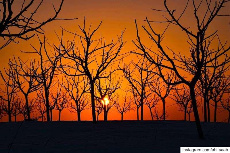Lᴇᴀᴠᴇ ᴛʜᴇ ʀᴏᴀᴅ.. Tᴀᴋᴇ ᴛʜᴇ ᴛʀᴀɪʟs﹗Mʏ Lᴇʙᴀɴᴏɴ 🇱🇧 lebanon sunset ... (Mount Lebanon)