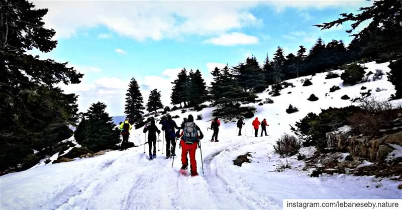 A typical winter hike.. akkar kobayat snowshoeing winteractivity ... (محمية كرم شباط)