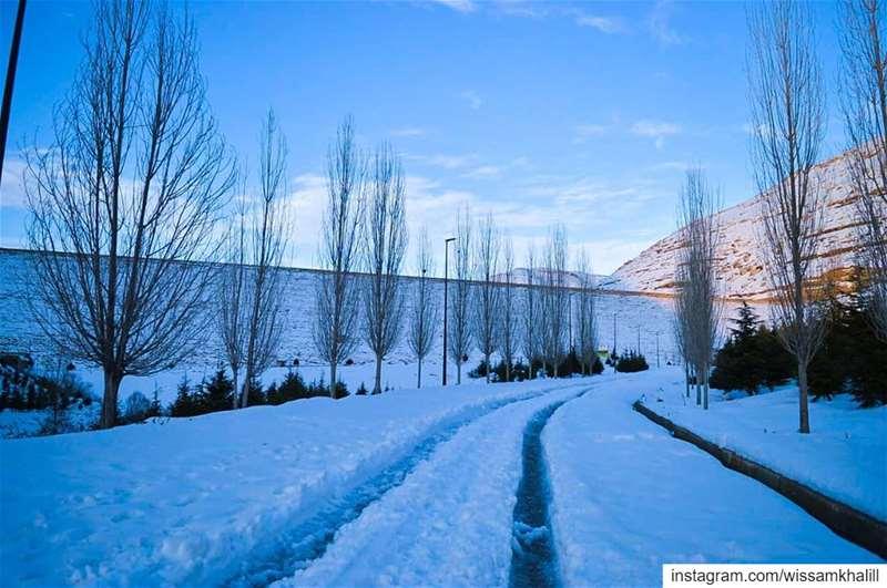 Chabrouh Faraya ❄️ faraya farayalovers lebanon lebanonlovers winter ... (Chabrouh-Faraya)