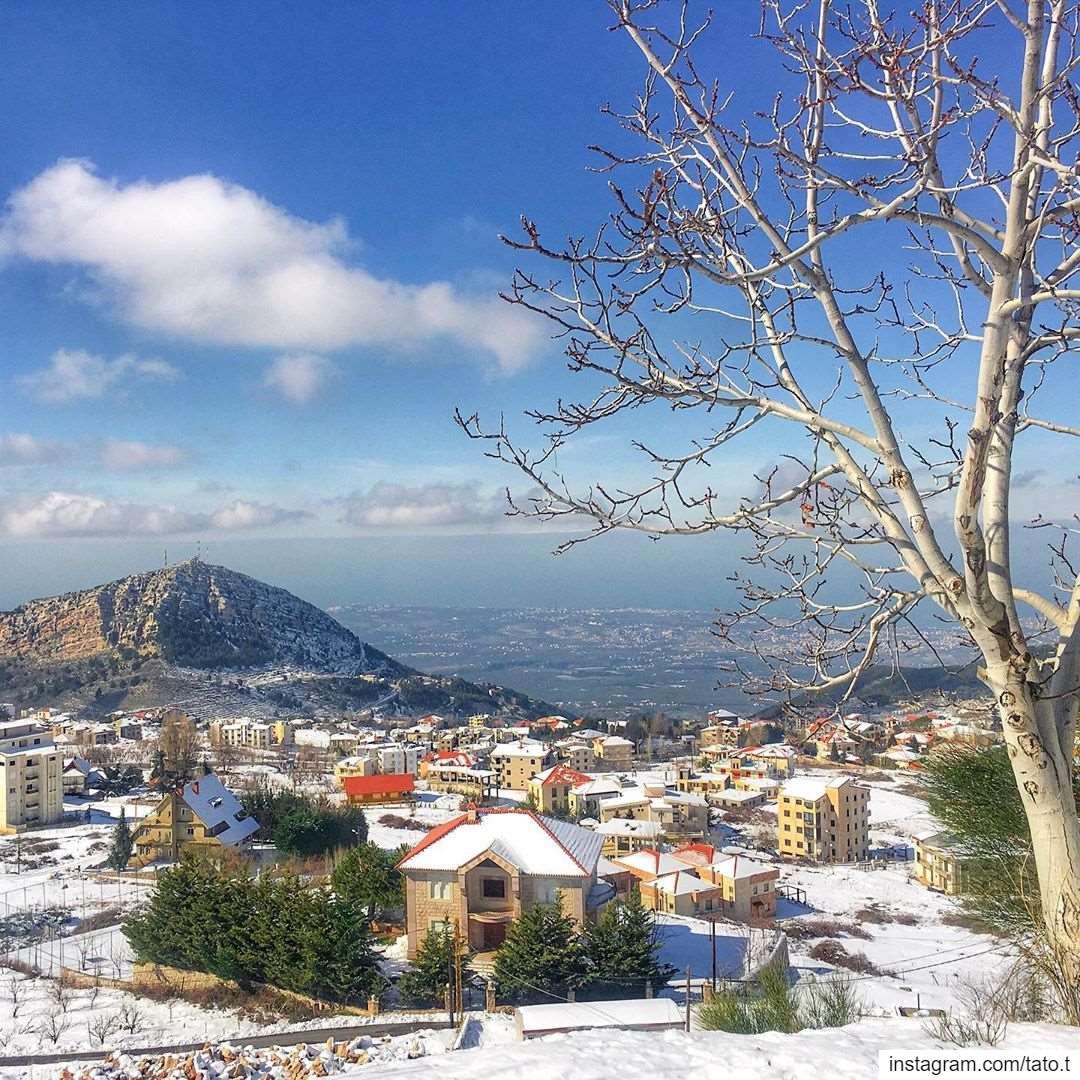 . . 𝙋𝙖𝙧𝙖𝙙𝙞𝙨𝙚 𝙙𝙤𝙚𝙨𝙣'𝙩 𝙝𝙖𝙫𝙚 𝙩𝙤 𝙗𝙚 𝙩𝙧𝙤𝙥𝙞𝙘𝙖𝙡••~ (Ehden, Lebanon)
