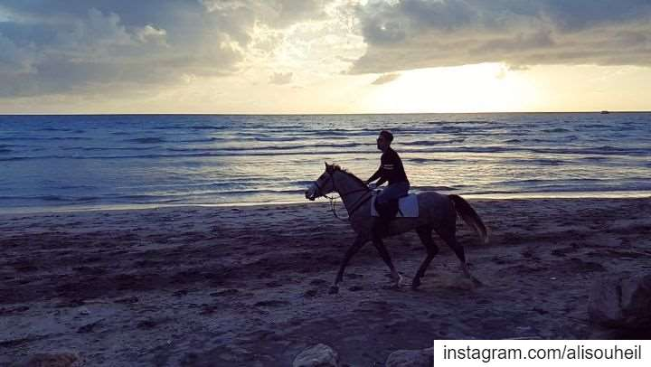 today  sunset  horse  beach  tyre  southlebanon  sea  slowmotion  love ... (Tyre, Lebanon)