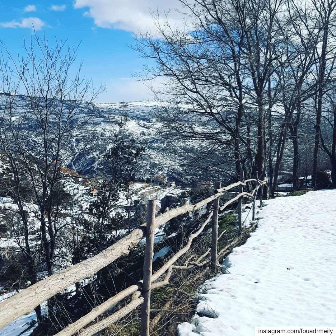 snowhiking snowshoeing lebanon🇱🇧 ... (Zaarour Hills)