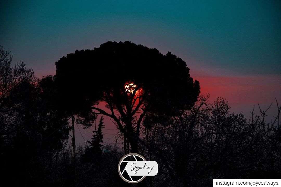 والشمس بعقد المرجان🔥🌅🌅🔥 sunset endoftheday anotherday redsunset ... (Chemlane, Mont-Liban, Lebanon)
