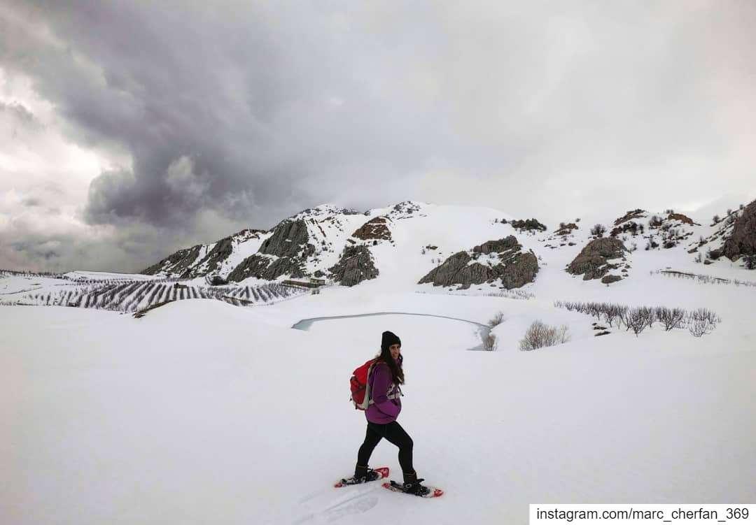 Can't Get Enough Of Snow ❄️ Hiking SnowShoeing Laqlouq Lebanon 🇱🇧... (El Laklouk, Mont-Liban, Lebanon)