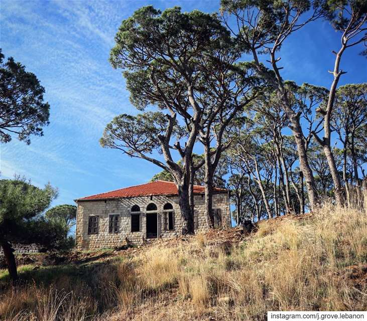 Who would say no to a traditional Lebanese house like this in the Pine...