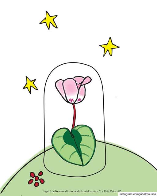 Thanks to your posts, now the Little Prince knows what makes Cyclamen...