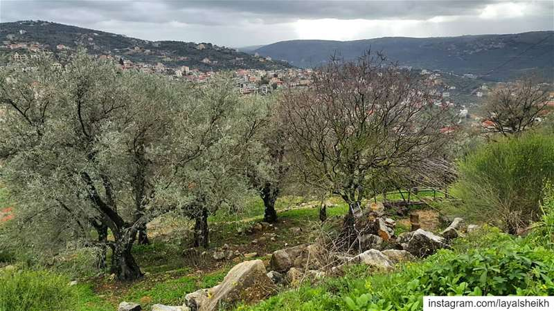 springwintertime livelovehasbaya hasbaya_pictures livelovejnoub ... (Hasbayya, Al Janub, Lebanon)