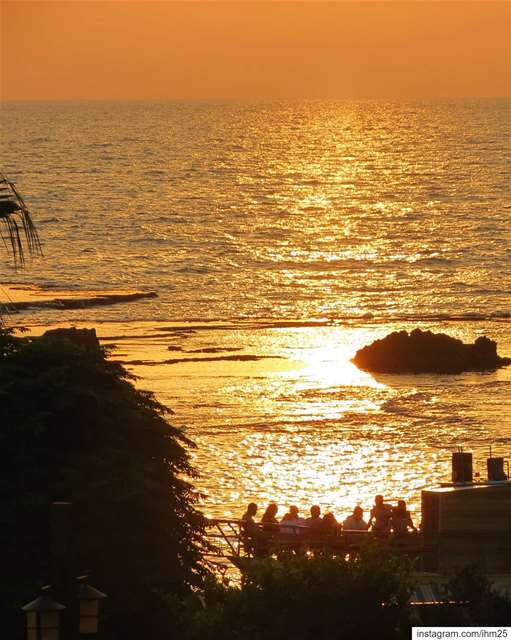 ... All gathered for the daily show 🌅☺.... (Byblos, Lebanon)