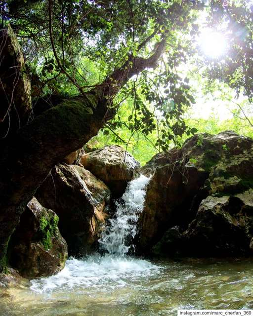 As Long As I Live, I'll Hear Waterfalls & Birds & Winds Sing 💚... (Yahchouch)